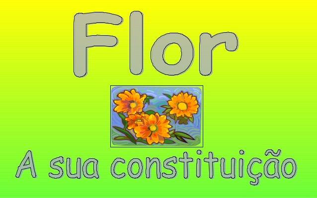 As plantas produzem flores que têm órgãos masculinos e femininos. A constituição de uma flor.
