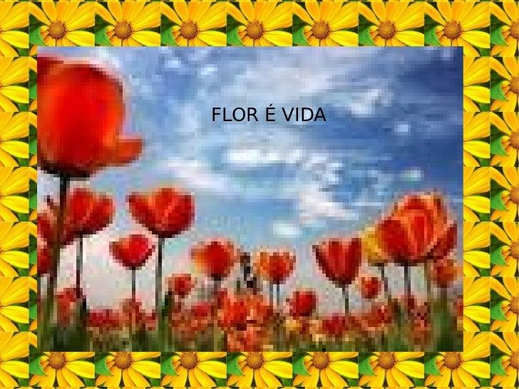 FLOR É VIDA