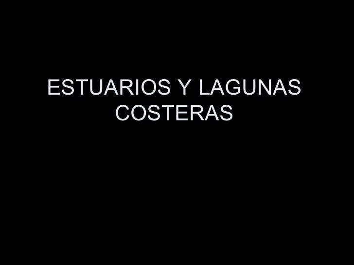 ESTUARIOS Y LAGUNAS COSTERAS