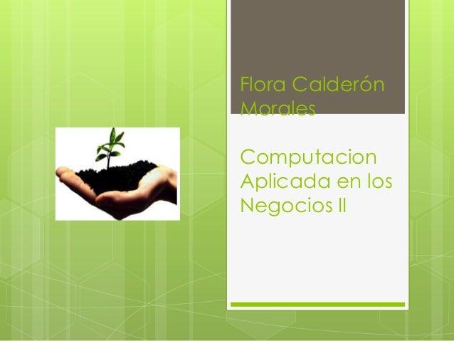Flora CalderónMoralesComputacionAplicada en losNegocios II