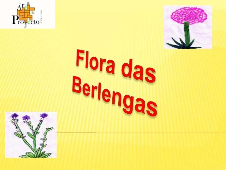 Flora das Berlengas<br />Flora das Berlengas<br />