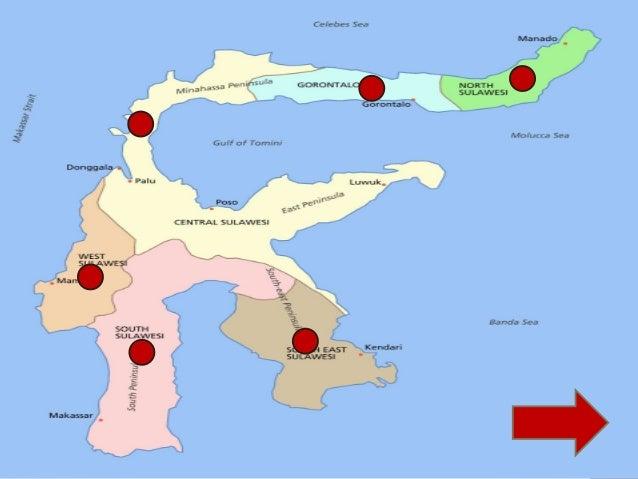 Peta Persebaran Flora Fauna Indonesia Bagian Tengah Sulawesi Maleopohon Eboni