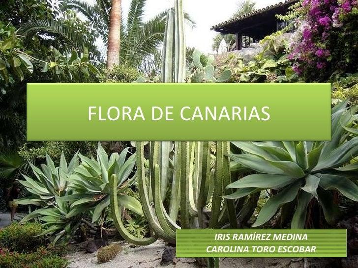 IRIS RAMÍREZ MEDINA CAROLINA TORO ESCOBAR FLORA DE CANARIAS