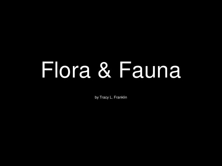 Flora & Fauna<br />by Tracy L. Franklin<br />