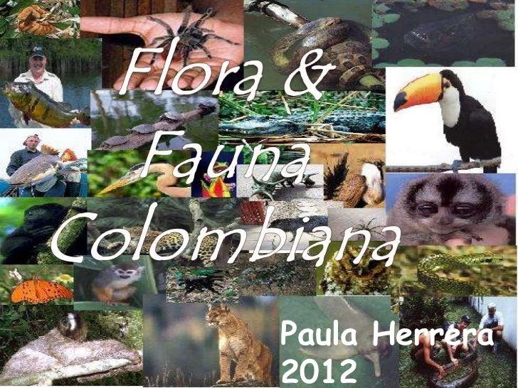 Paula Herrera2012