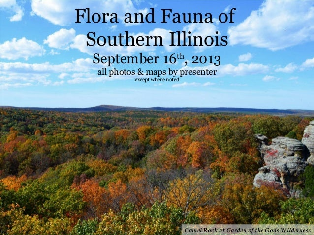 Flora and Fauna of Southern Illinois September 16th , 2013 all photos & maps by presenter except where noted Camel Rock at...