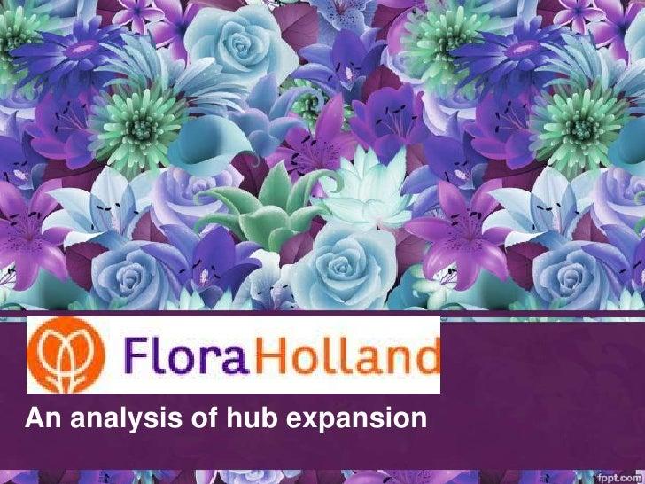 An analysis of hub expansion