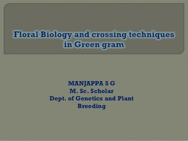 MANJAPPA S G M. Sc. Scholar Dept. of Genetics and Plant Breeding
