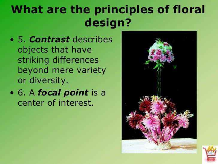 Principles Of Design Contrast : Introduction to floral design