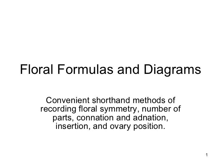Floral Formulas and Diagrams Convenient shorthand methods of recording floral symmetry, number of parts, connation and adn...