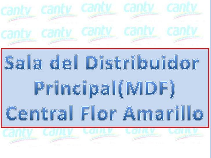 MDFCalle        Entrada        Principal                          Mediciones:                         11.80m x 5.80m      ...