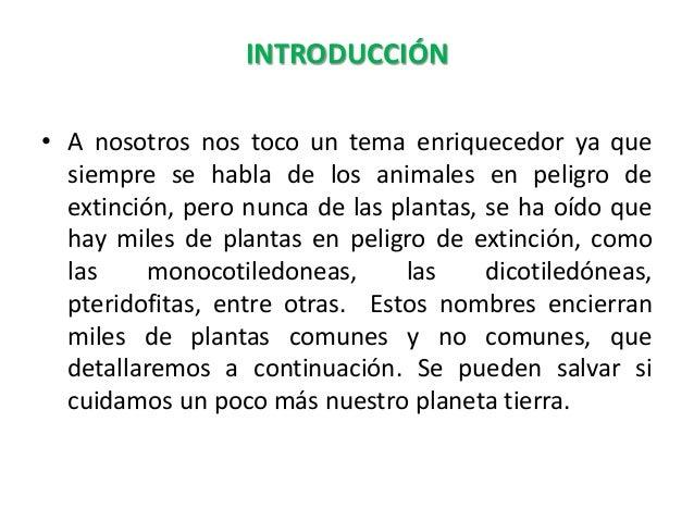 Flora peligro extincion_ariadna_joel