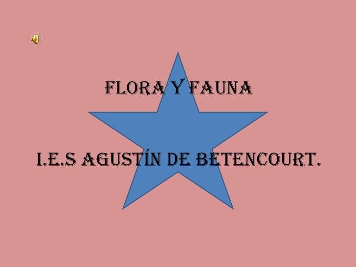 Flora y faunaI.E.S AGUSTÍN DE BETENCOURT.<br />