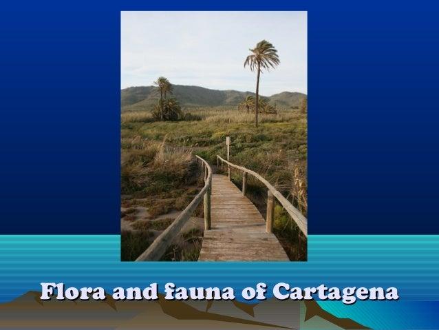 Flora and fauna of CartagenaFlora and fauna of Cartagena