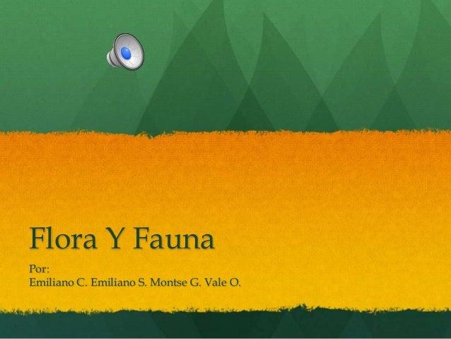 Flora Y Fauna Por: Emiliano C. Emiliano S. Montse G. Vale O.