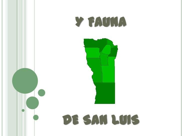 Y FAUNADE SAN LUIS