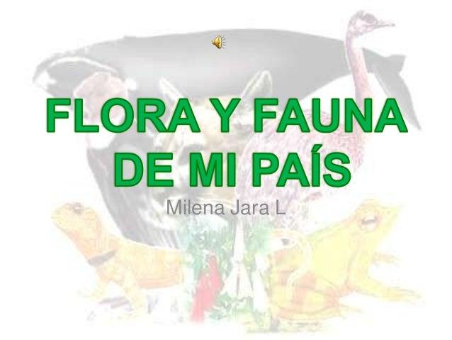Milena Jara L