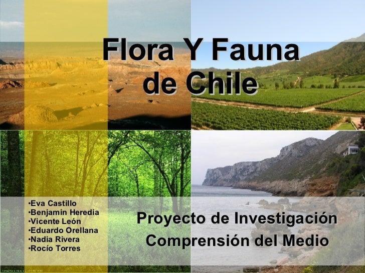 Flora Y Fauna de Chile Proyecto de Investigación Comprensión del Medio <ul><li>Eva Castillo  </li></ul><ul><li>Benjamin He...