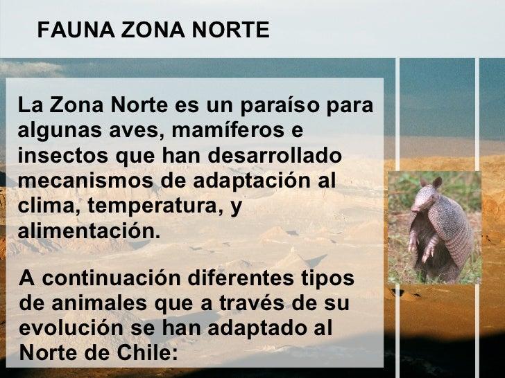 La fauna de la zona norte pretty girls for Piletas publicas en zona norte