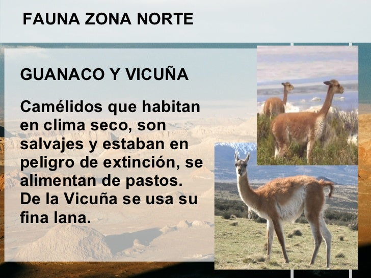 La fauna de la zona norte pretty girls for Marmoles y granitos zona norte
