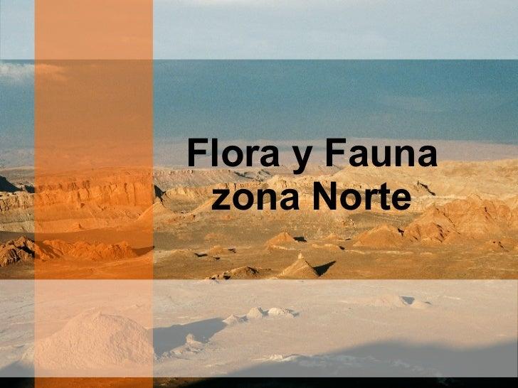 Flora y fauna de chile final for Marmoles y granitos zona norte