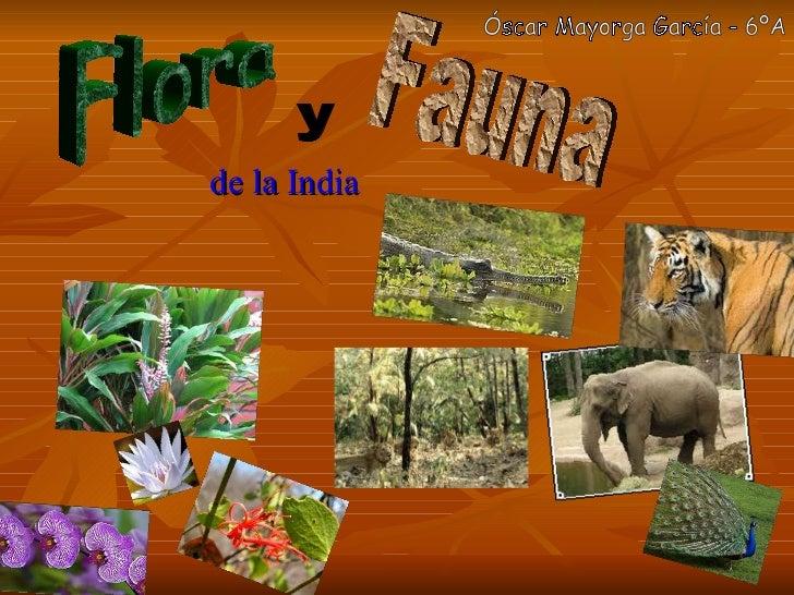 de la India Flora y Fauna Óscar Mayorga García - 6ºA