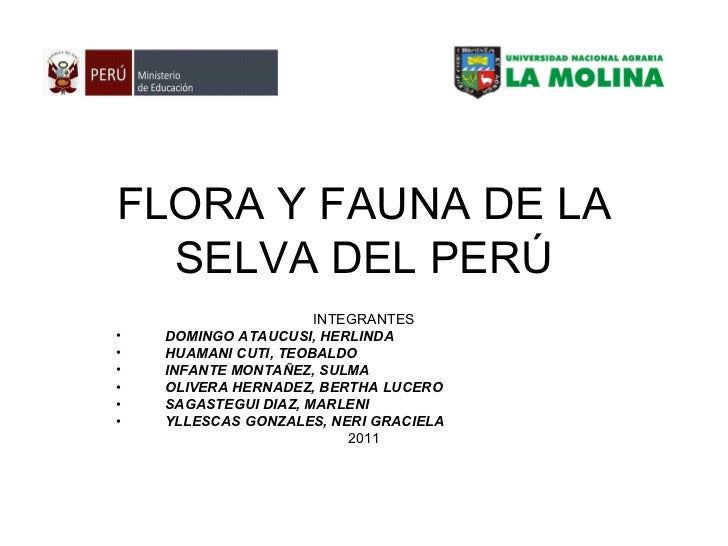 FLORA Y FAUNA DE LA SELVA DEL PERÚ <ul><li>INTEGRANTES </li></ul><ul><li>DOMINGO ATAUCUSI, HERLINDA </li></ul><ul><li>HUAM...