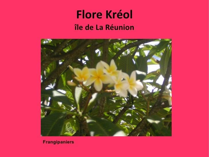 Flore Kréol                île de La RéunionFrangipaniers