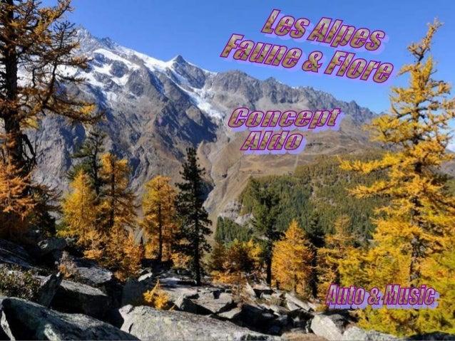 Flore et faune des alpes
