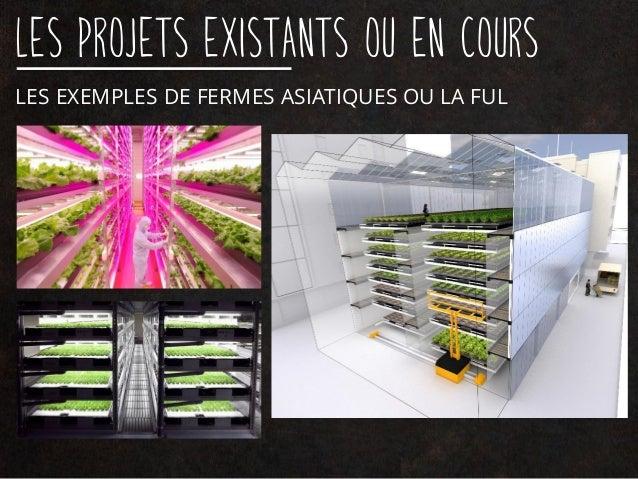Les projets existants ou en cours LA LUFA FARM