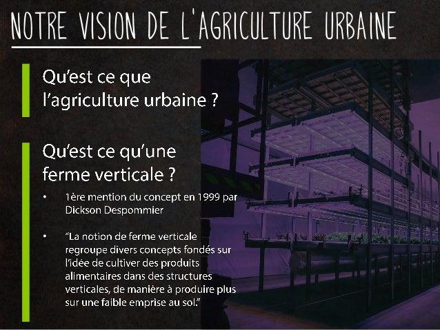 Notre vision de l'agriculture urbaine • •