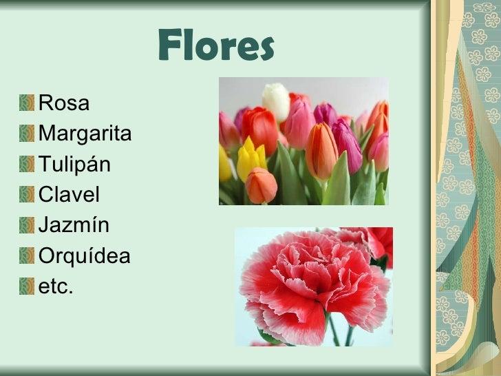Flores <ul><li>Rosa </li></ul><ul><li>Margarita </li></ul><ul><li>Tulipán </li></ul><ul><li>Clavel </li></ul><ul><li>Jazmí...