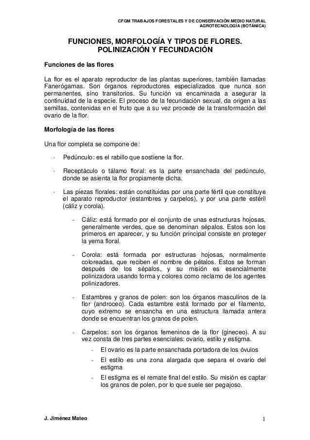 CFGM TRABAJOS FORESTALES Y DE CONSERVACIÓN MEDIO NATURALAGROTECNOLOGÍA (BOTÁNICA)FUNCIONES, MORFOLOGÍA Y TIPOS DE FLORES.P...