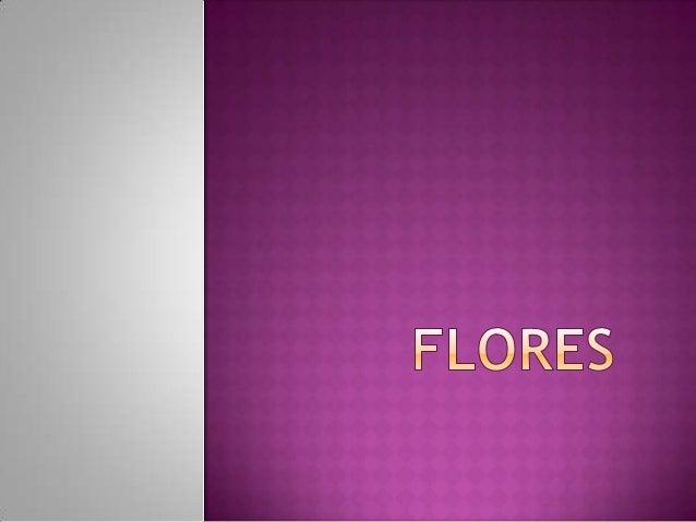 A flor é a estrutura reprodutora característicadas plantas denominadas espermatófitas oufanerogâmicas. A função de uma flo...