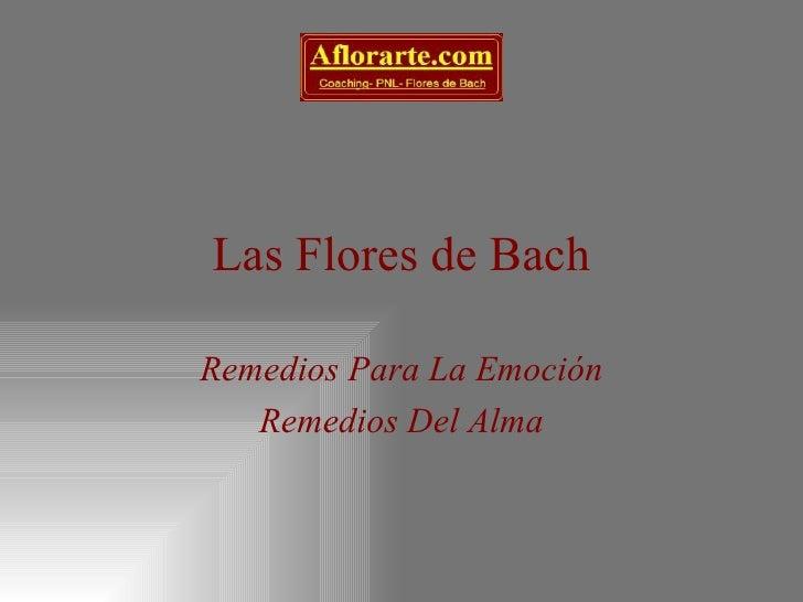 Las Flores de Bach Remedios Para La Emoción Remedios Del Alma