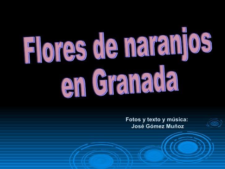 Fotos y texto y música:  José Gómez Muñoz Flores de naranjos  en Granada