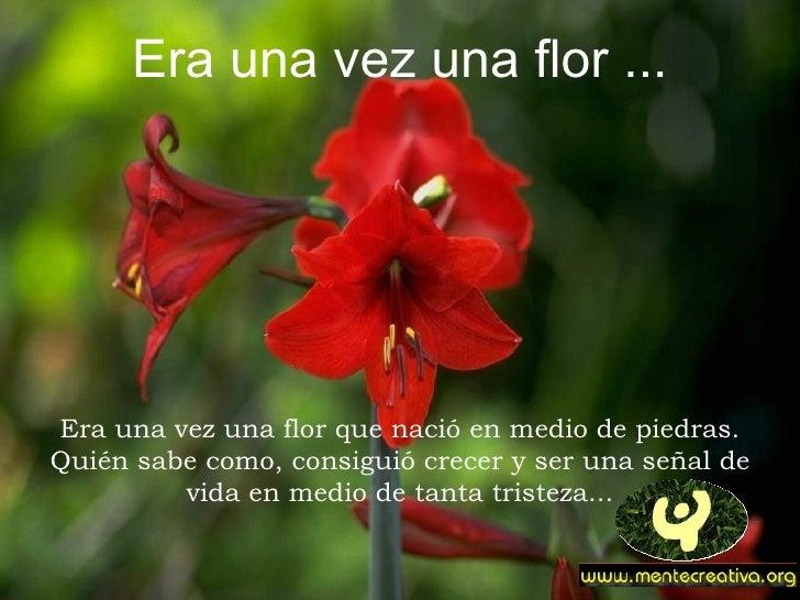 Era una vez una flor ...     Era una vez una flor que nació en medio de piedras. Quién sabe como, consiguió crecer y ser u...