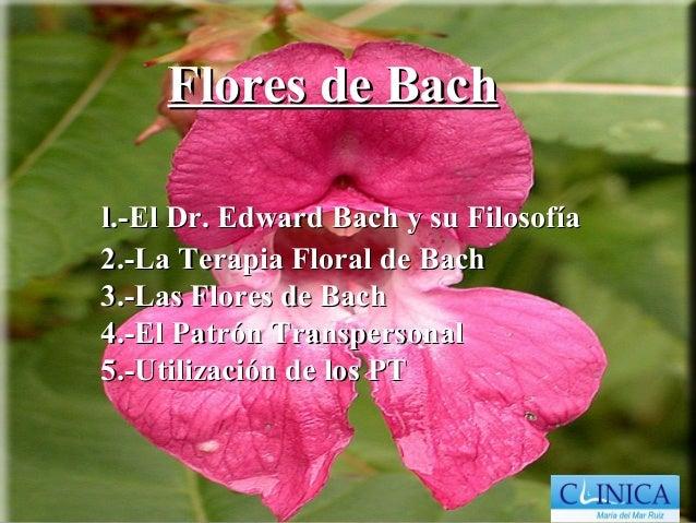 Flores de Bachl.-El Dr. Edward Bach y su Filosofía2.-La Terapia Floral de Bach3.-Las Flores de Bach4.-El Patrón Transperso...