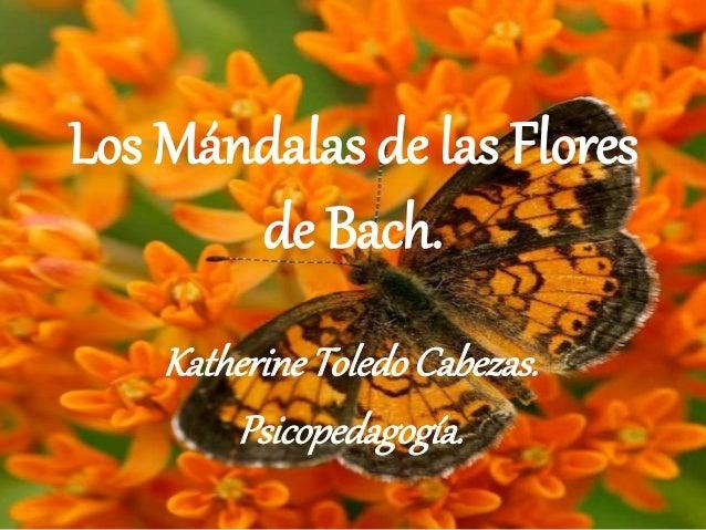 Los Mándalas de las Flores  de Bach.  Katherine Toledo Cabezas.  Psicopedagogía.