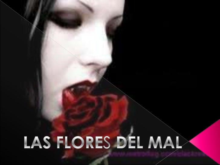 Flores del mal jeissssssson