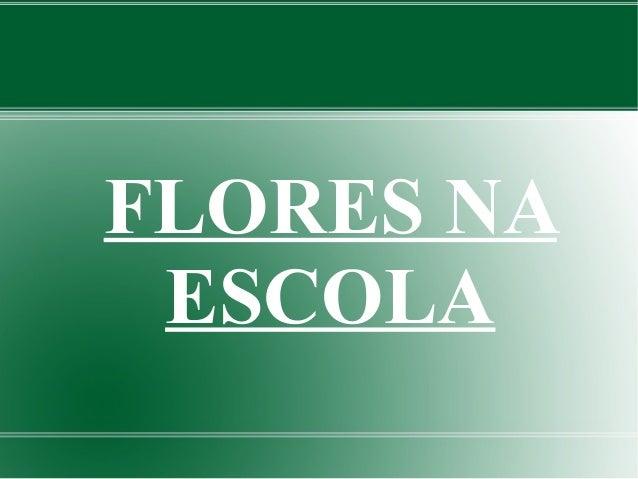 FLORES NA  ESCOLA