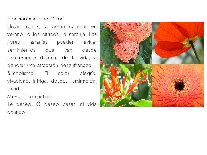 Flor naranja o de Coral Hojas rojizas, la arena caliente en verano, o los cítricos, la naranja. Las flores naranjas pueden...