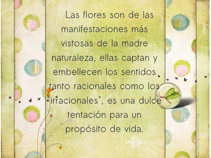 Las flores son de las manifestaciones más vistosas de la madre naturaleza, ellas captan y embellecen los sentidos tanto ra...