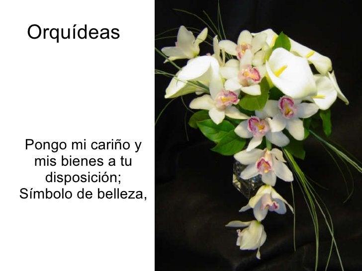 Orquídeas Pongo mi cariño y mis bienes a tu disposición; Símbolo de belleza,
