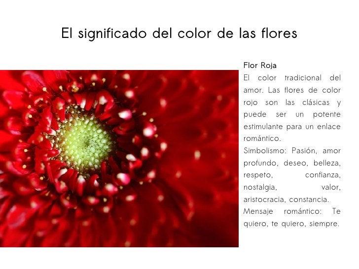 El significado del color de las flores Flor Roja El color tradicional del amor. Las flores de color rojo son las clásicas ...