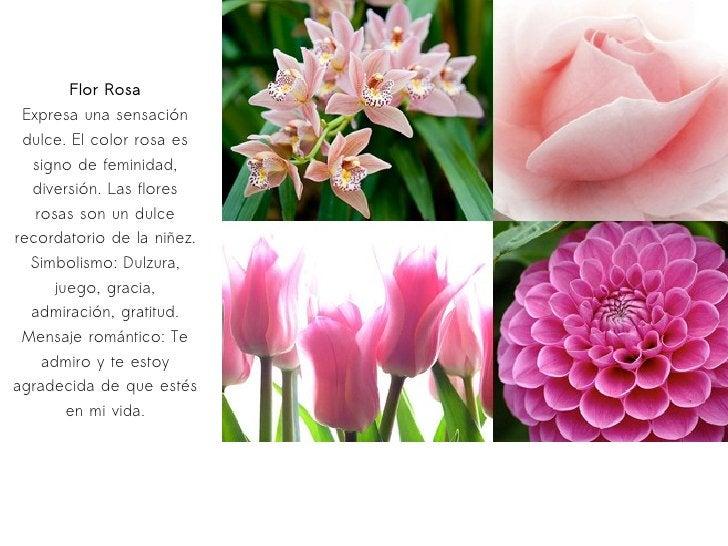 Flor Rosa Expresa una sensación dulce. El color rosa es signo de feminidad, diversión. Las flores rosas son un dulce recor...