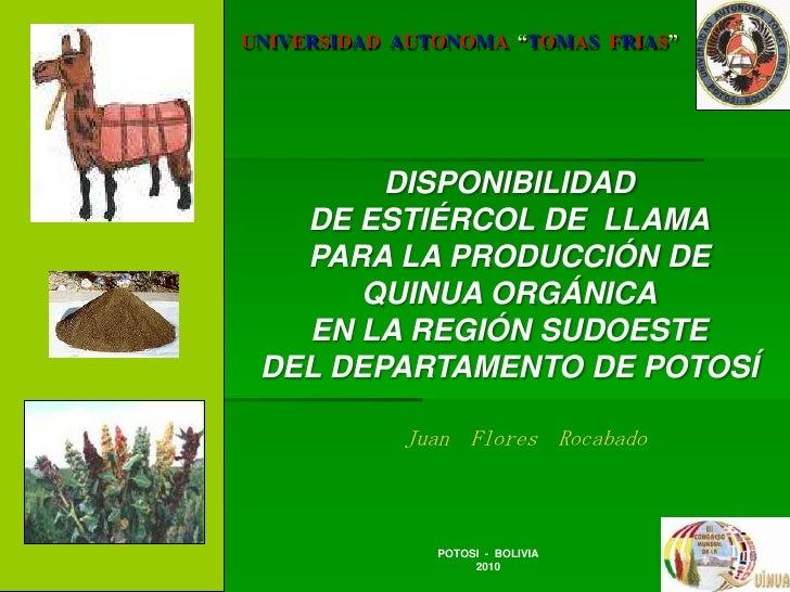 """UNIVERSIDADAUTONOMA  """"TOMASFRIAS""""<br />DISPONIBILIDAD <br />DE ESTIÉRCOL DE  LLAMA<br />PARA LA PRODUCCIÓN DE <br />QUINUA..."""