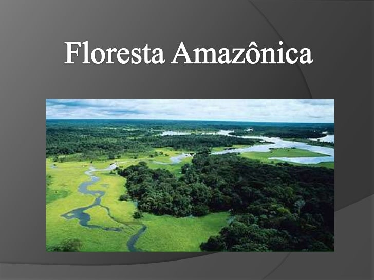 Floresta Amazônica<br />