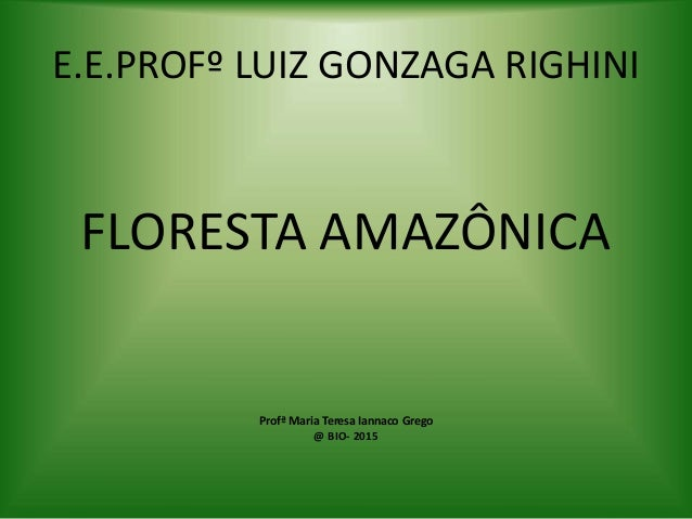 E.E.PROFº LUIZ GONZAGA RIGHINI FLORESTA AMAZÔNICA Profª Maria Teresa Iannaco Grego @ BIO- 2015