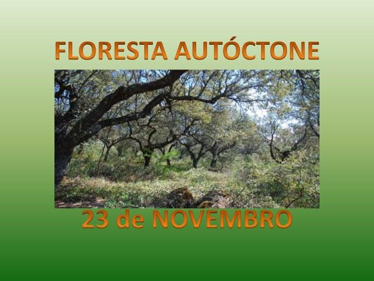 O que é a Floresta Autóctone?É uma floresta cujas árvores sãooriginárias do próprio território ondehabitam.
